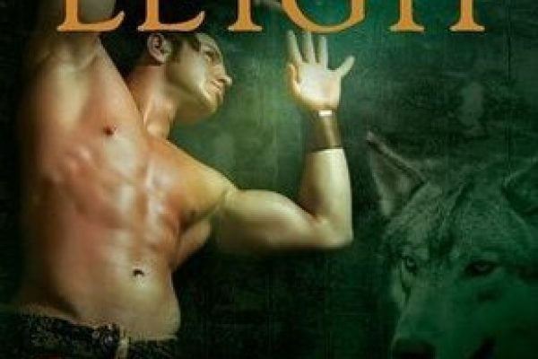 Review: Navarro's Promise by Lora Leigh