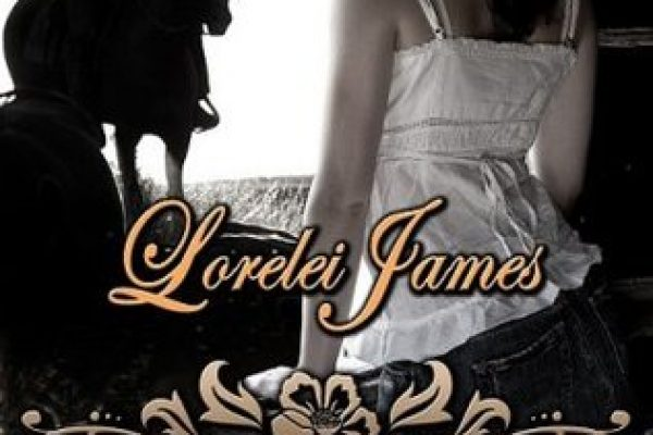 Review: Rode Hard, Put Up Wet by Lorelei James