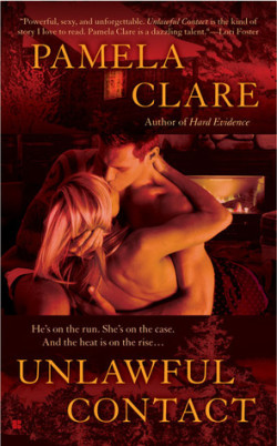 Review: Unlawful Contact by Pamela Clare