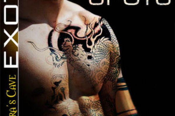 Review: Ink Spots by Lissa Matthews