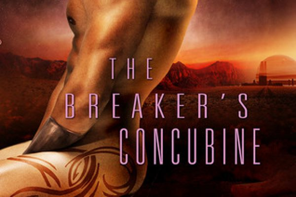 Review: The Breaker's Concubine by Ann Mayburn