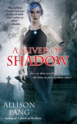 Review: A Sliver of Shadow by Allison Pang