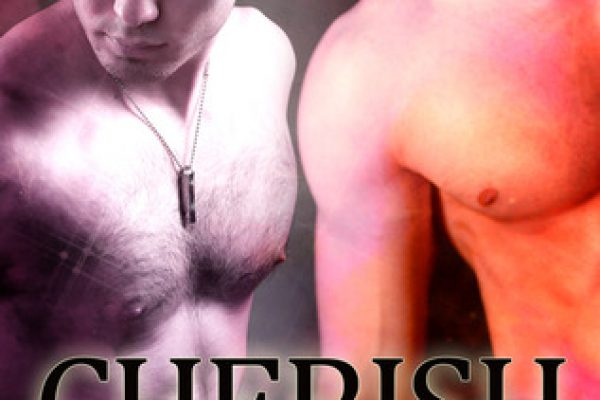 Review: Cherish by Ann Mayburn
