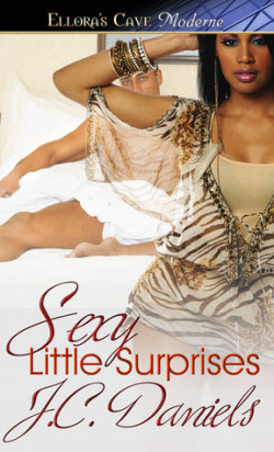 Review: Sexy Little Surprises by J.C. Daniels