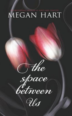 ARC Review: The Space Between Us by Megan Hart