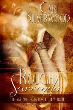 Review: Rough Surrender by Cari Silverwood