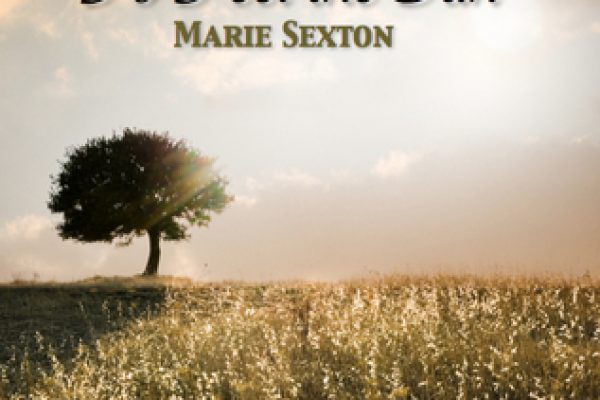 Review: To Feel the Sun by Marie Sexton