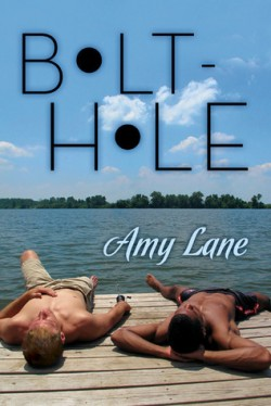 ARC Review: Bolt-Hole by Amy Lane
