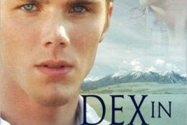Review: Dex in Blue by Amy Lane
