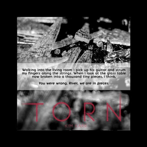 TORN TEASERS (6)