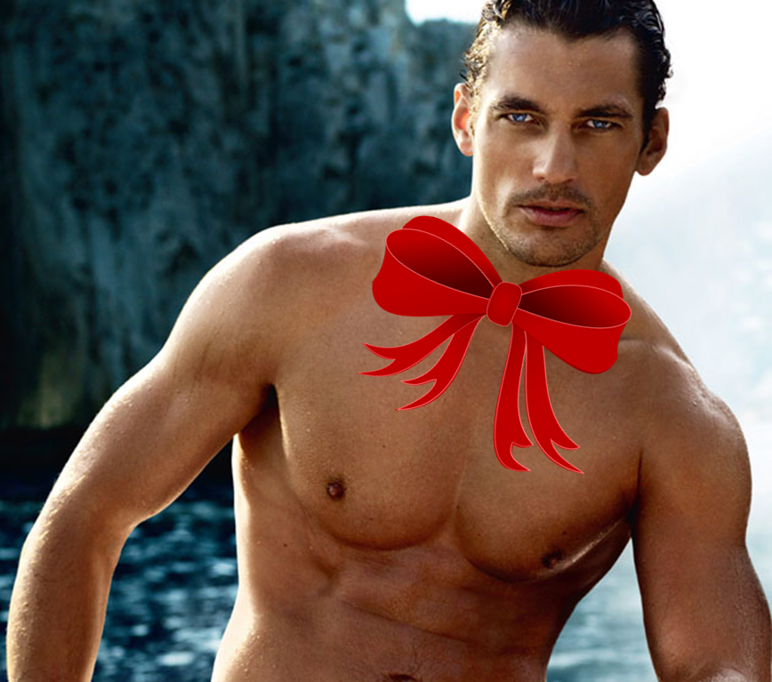 Gandy-Red-Bow