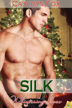 Review: Silk by Cathryn Fox