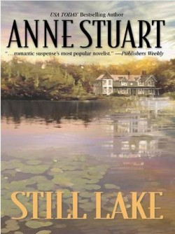 Review: Still Lake by Anne Stuart