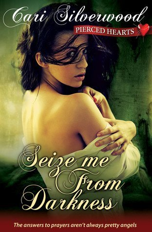 SEIZE ME FROM DARKNESS by Cari Silverwood [EROTIC]
