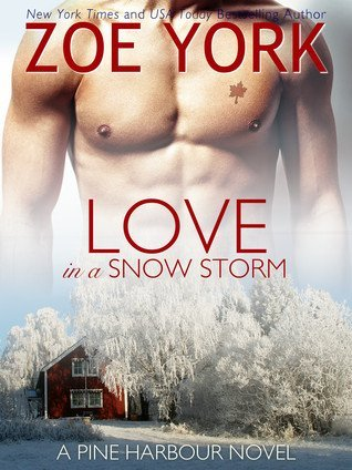 Love in a Snow Storm