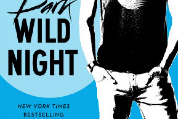 ARC Review + Excerpt: Dark Wild Night by Christina Lauren