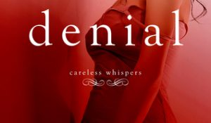 ARC Review:  Denial by Lisa Renee Jones