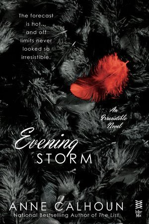 Evening Storm by Anne Calhoun