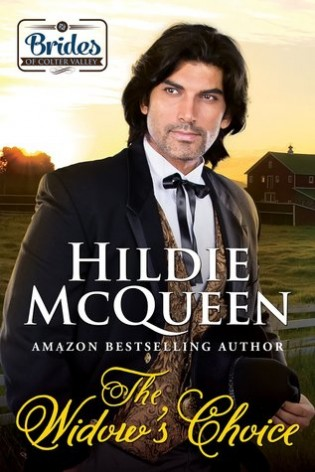 The Widow's Choice by Hildie McQueen