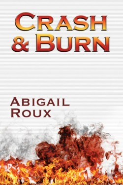 Review: Crash & Burn by Abigail Roux
