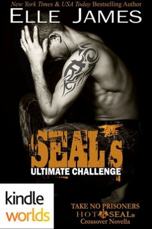 SEAL's Ultimate Challenge by Elle James