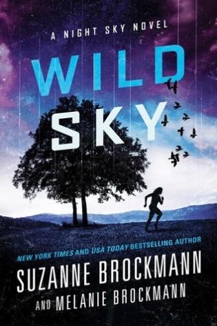 Wild Sky by Suzanne Brockmann and Melanie Brockmann