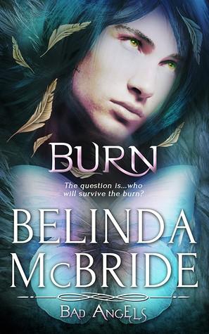 Burn by Belinda McBride