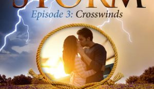 ARC Review: Crosswinds by Elisabeth Naughton