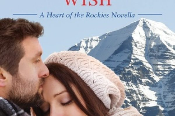 One Christmas Wish by Sara Richardson
