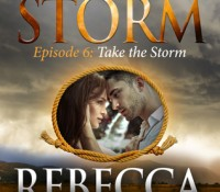 ARC Review: Take the Storm by Rebecca Zanetti