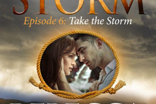 ARC Review: Take the Storm by Rebecca Zanetti