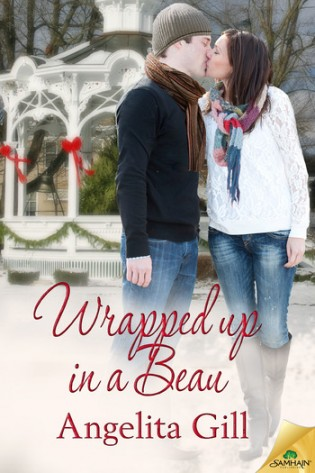 Wrapped Up in a Beau by Angelita Gill