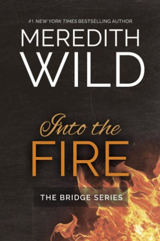 Into the Fire by Meredith Wild