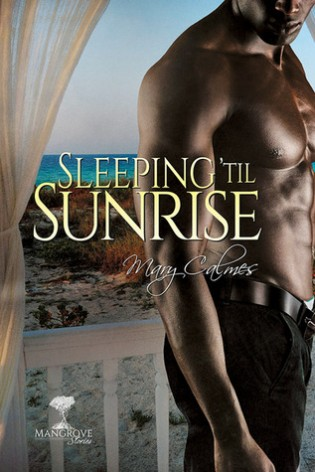 ARC Review: Sleeping 'Til Sunrise by Mary Calmes