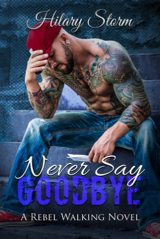 Never Say Goodbye by Hilary Storm