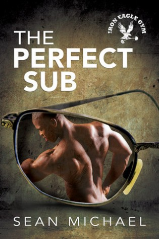 The Perfect Sub by Sean Michael