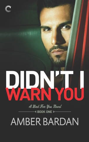 Didn't I Warn You by Amber Barden