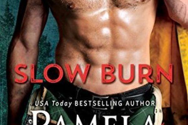 Slow Burn by Pamela Clare