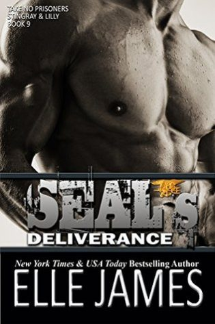SEAL's Deliverance by Elle James
