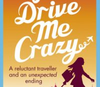 You Drive Me Crazy by Anna Premoli