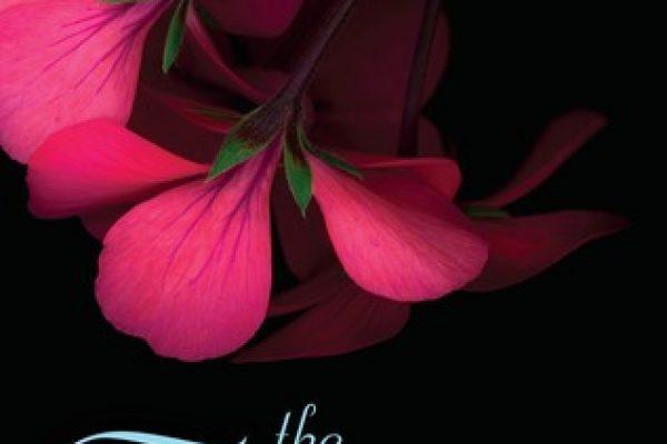 ARC Review: The Flirtation by Tara Sue Me