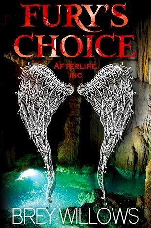 Fury's Choice by Brey Willows