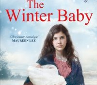 The Winter Baby by Sheila Newberry