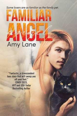 Familiar Angel by Amy Lane