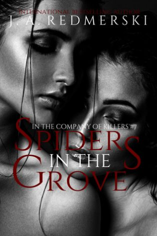 Spiders in the Grove by J.A. Redmerski