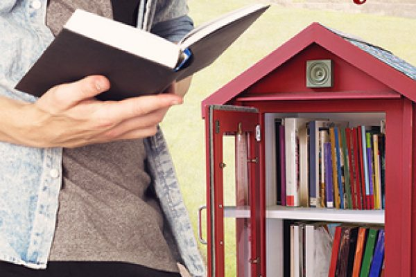 The Little Library by Kim Fielding