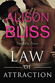 Law of Attraction by Alison Bliss
