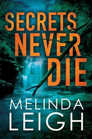ARC Review: Secrets Never Die by Melinda Leigh