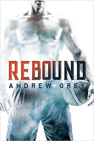 Rebound by Andrew Grey
