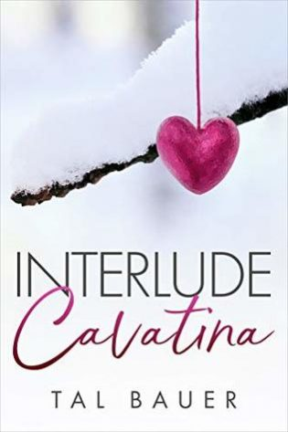 Interlude: Cavatina by Tal Bauer